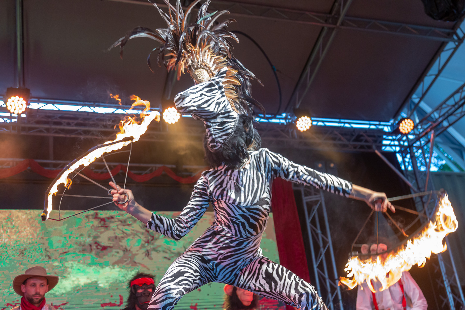 Fire dancing zebra